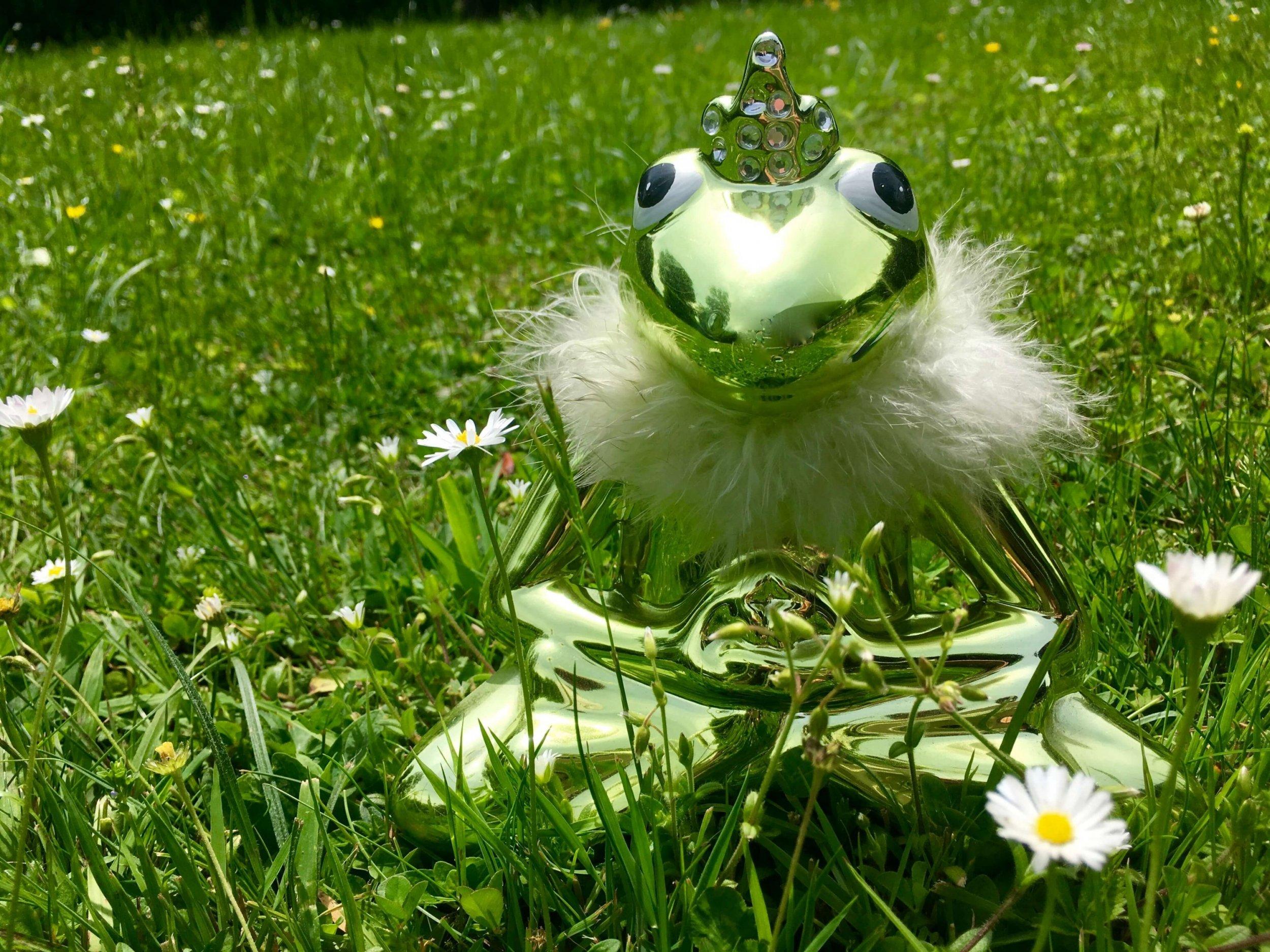 Porzellanfrosch im Gras