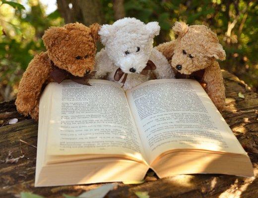 3 Teddybären lesen im Buch
